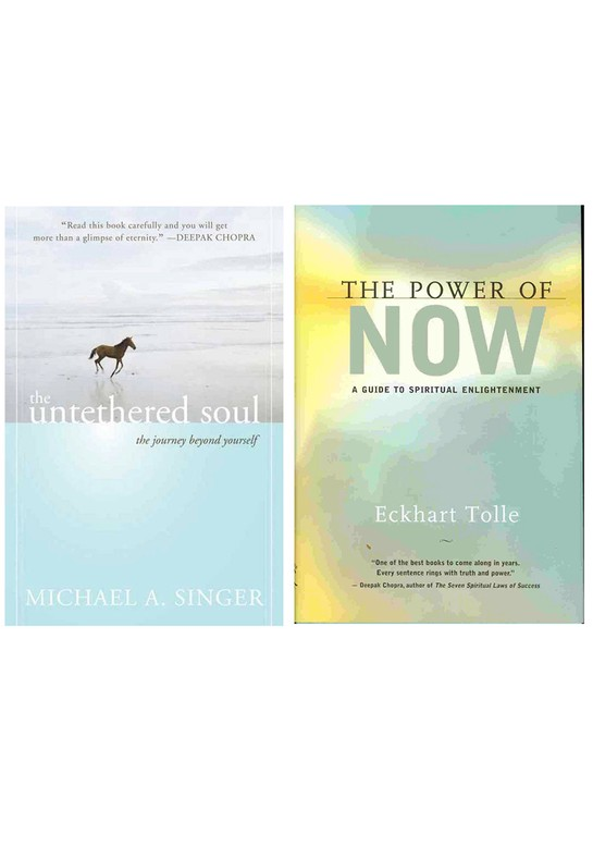 """The Untethered Soul,"" by Michael A. Singer, and ""The Power of Now,"" by Eckhart Tolle"