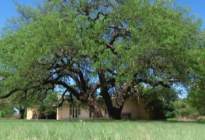 Tour The Bush S Crawford Texas Ranch