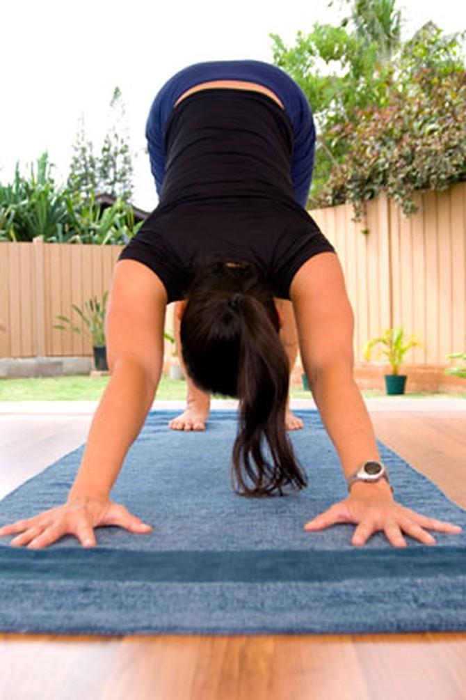 Essential Exercises - Push-Ups, Downward Dog, Squats, Planks