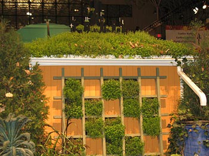 Finding every little extra space, including a garage roof, for growing.