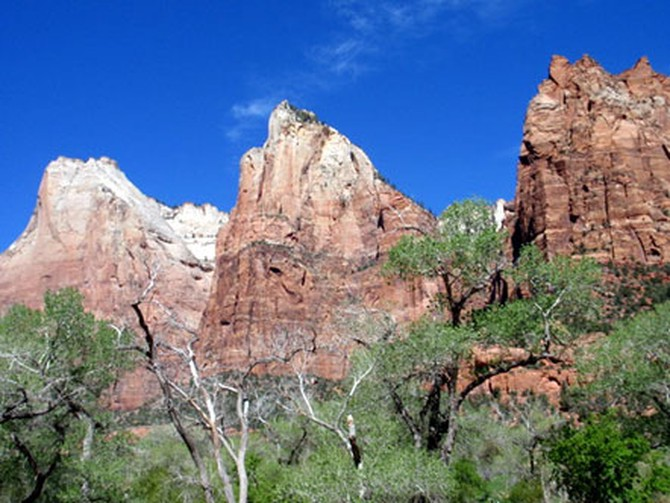 Red Mountains in Zion National Park, Utah