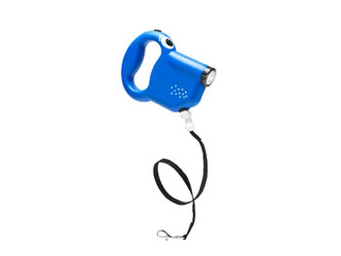 Intuition dog leash