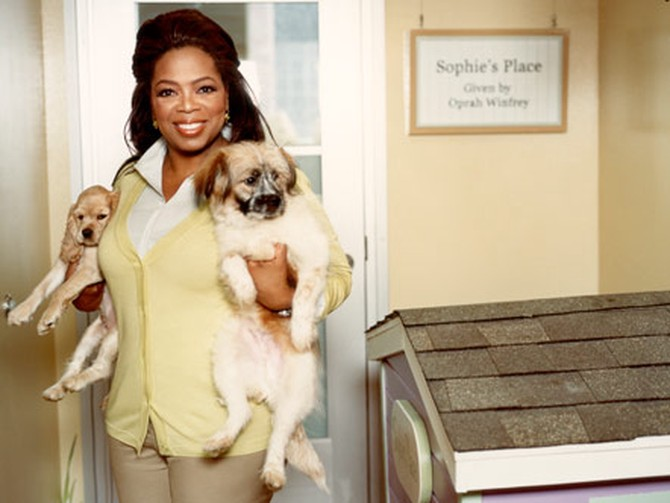 Oprah holding puppies at PAWS