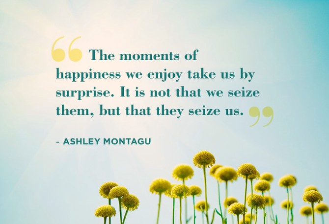 Ashley Montagu quote