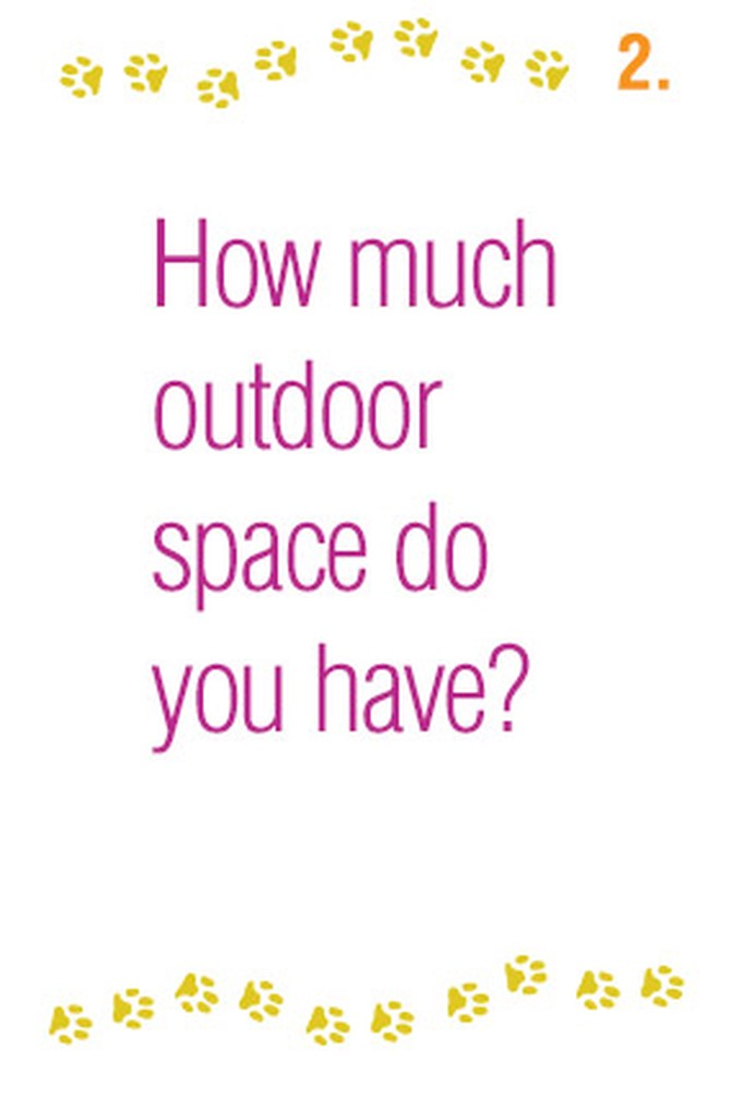 How much outdoor space do you have?