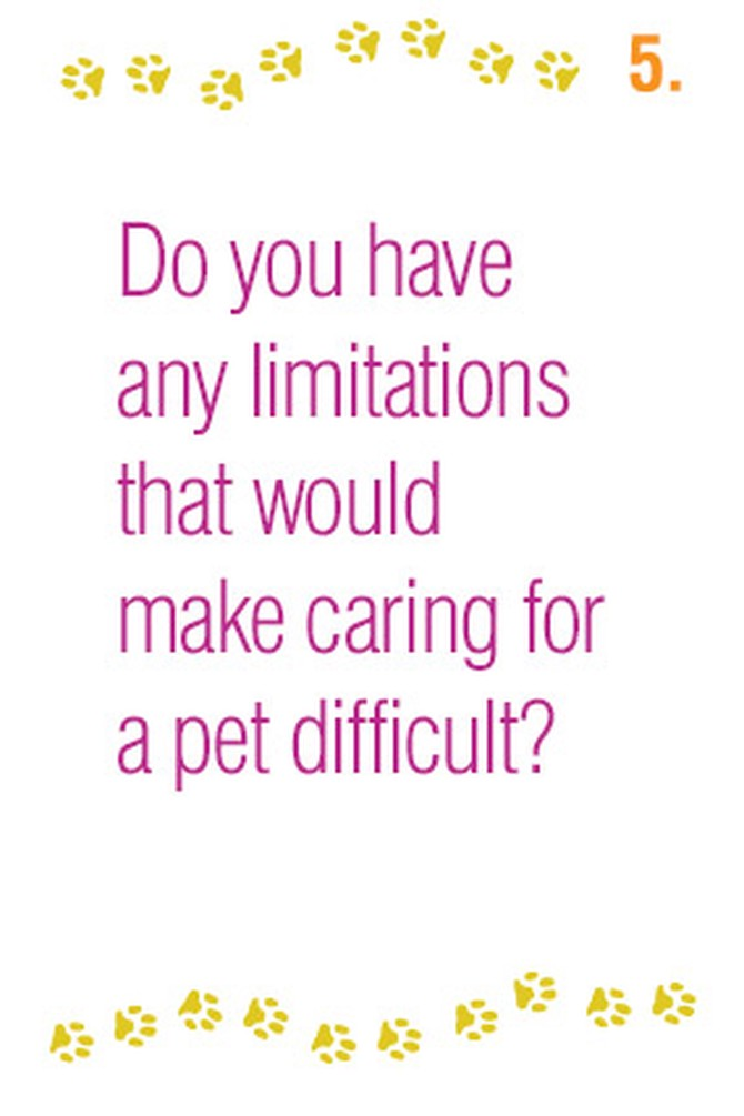 Do you have any limitations that would make caring for a pet difficult?