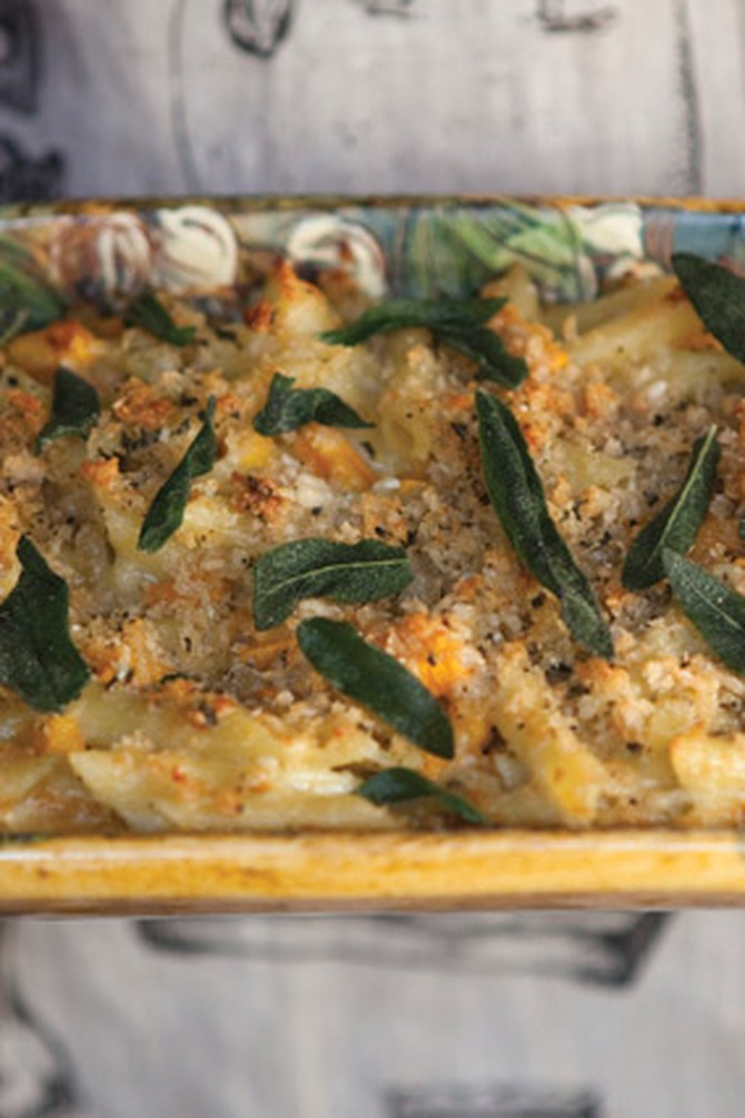 Penne Pasta Quattro Formaggi with Butternut Squash and Sage