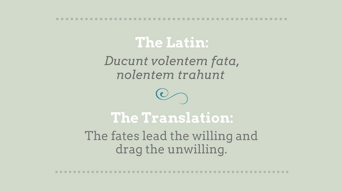 phrases in latin that should make a comeback