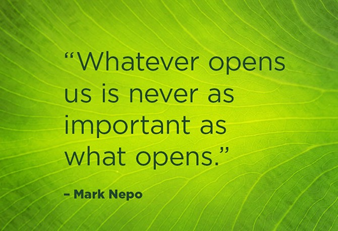 Mark Nepo quotation