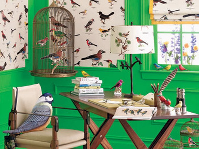Room with bird theme