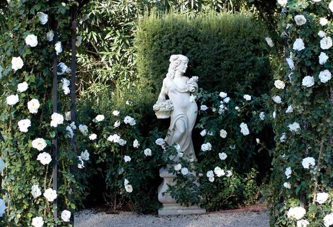 White-pink Sombreuil roses and pure-white Iceberg roses surround the statue.