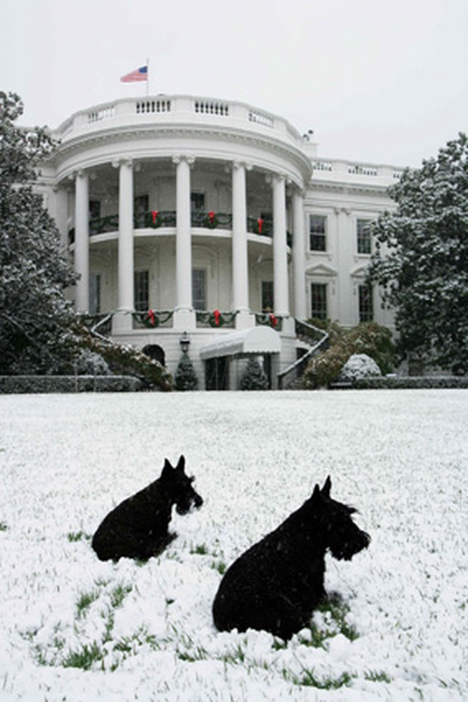 Barney and Mrs. Beazly outside the South Portico of the White House.