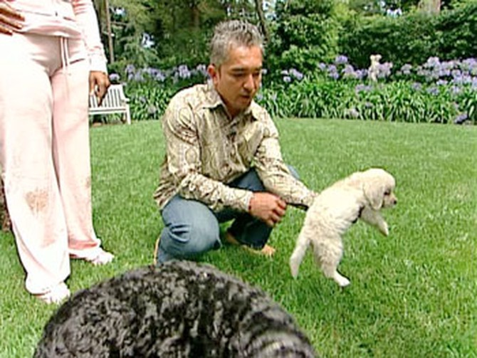 Cesar Millan, the dog whisperer