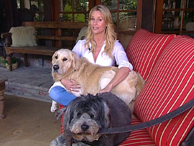 Nicollette Sheridan and her dogs, Oliver and Little Fatty Princess